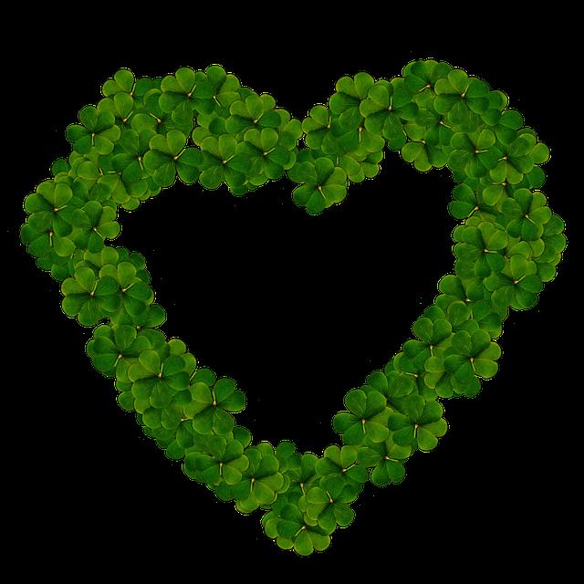 heart-1972825_640
